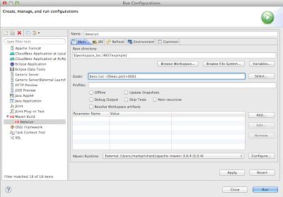 Maven run configuration add port