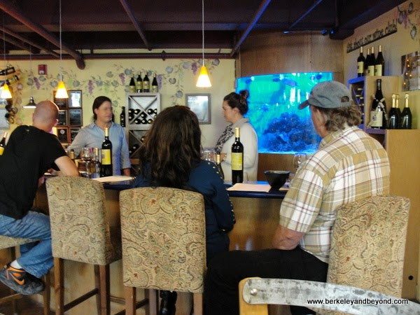 tasting bar at Alapay Cellars in Avila Beach, California