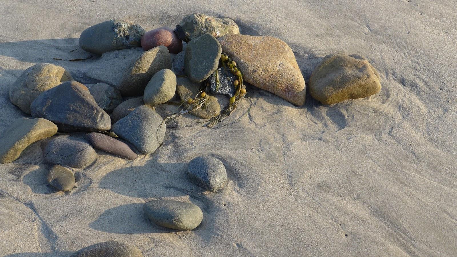 Beached - Zuma Beach, Malibu, CA