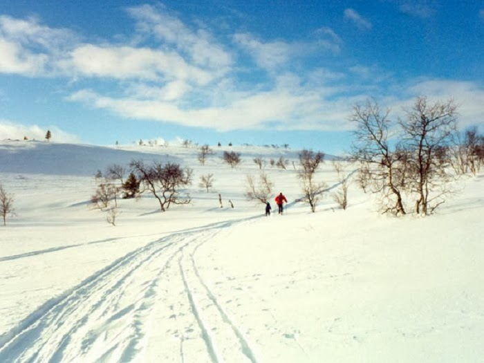 Visiting Lapland may require you to do some cross country skiing…