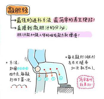 什麼是膽經?膽經是一條從頭到腳的經絡,其中大腿外側是最容易被寒氣侵入的部位哦~也是膽經最容易積存寒氣的部位~膽經如果長時間累積寒氣,就會造成這個部位的經絡不通暢,膽的機能也難以正常運作~而且脂肪也會在臀部和大腿外側不斷累積哦!超簡單瘦大腿招術:敲膽經