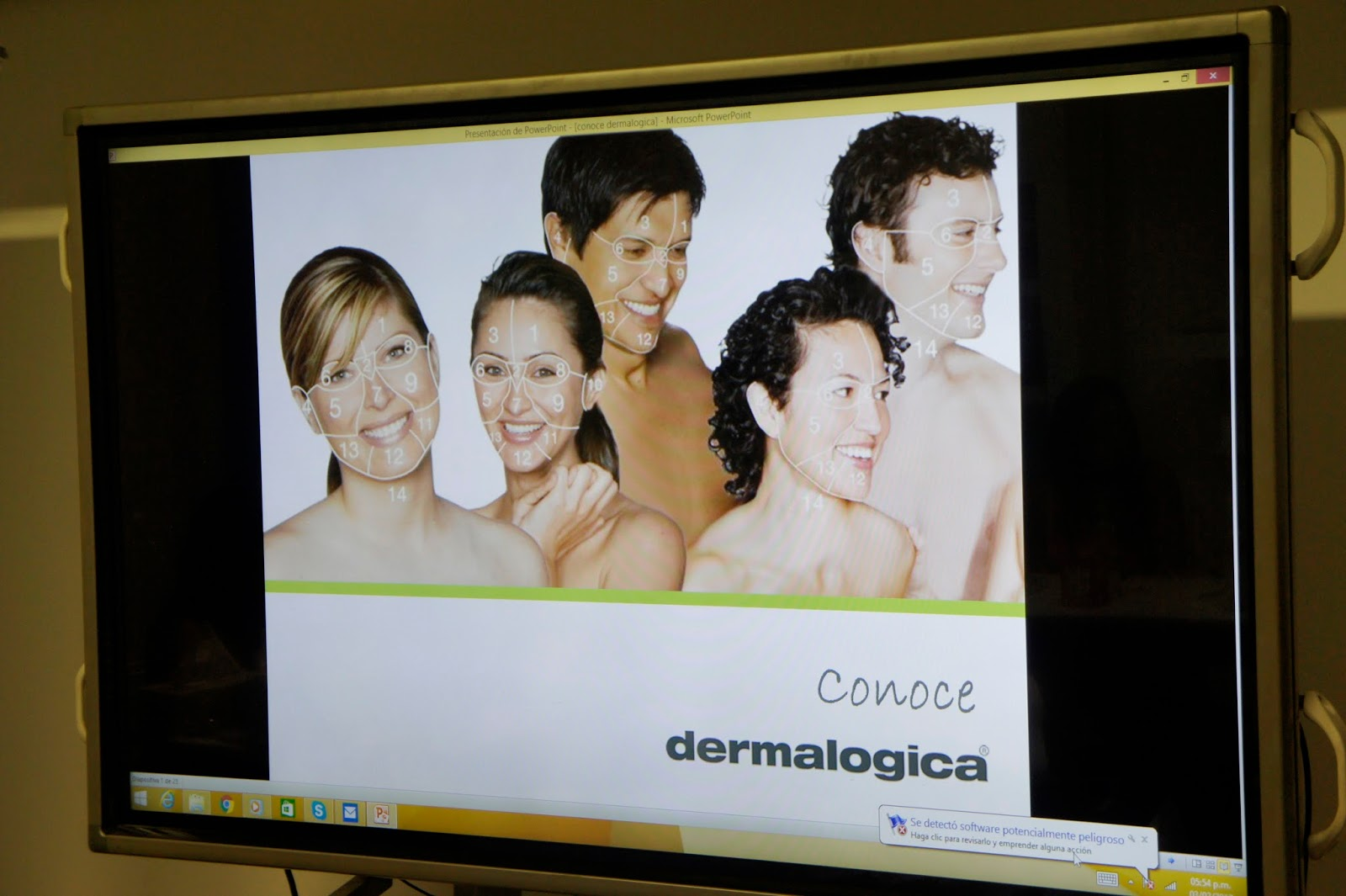 Face Mapping Dermalogica