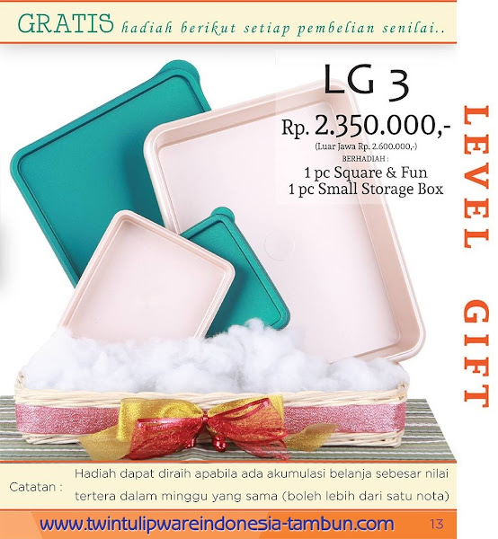 Level Gift 3 Twin Tulipware Maret 2016