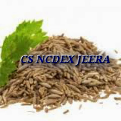 Agri commodity calls, Agri Commodity Tips, Free  Commodity Tips, Free Agri Tips, Jeera Tips, MCX Tips Services,
