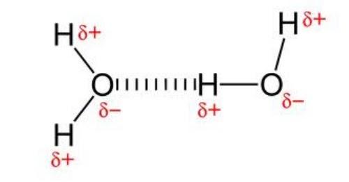 Ikatan Hidrogen (Pembentukan, Sifat, dan Bukti Adanya