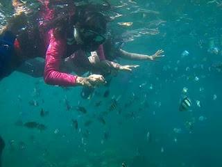 Travel Jakarta Lampung Berkualitas