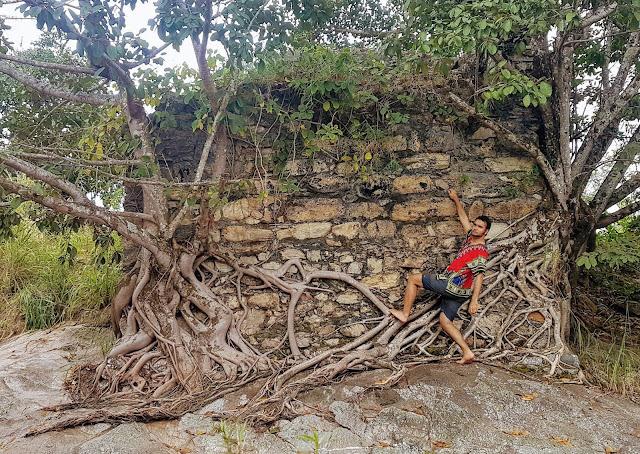 Pendurado em parte da ponte no Rio das Almas que foi tomada por uma árvore.