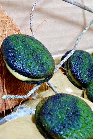 macarons-kiwi