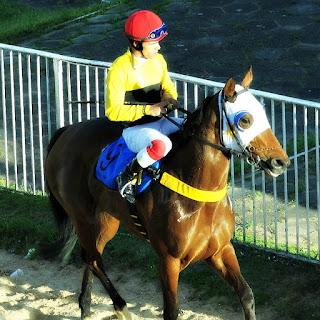 Um Jóquei após Corrida de Cavalos no Hipódromo do Cristal