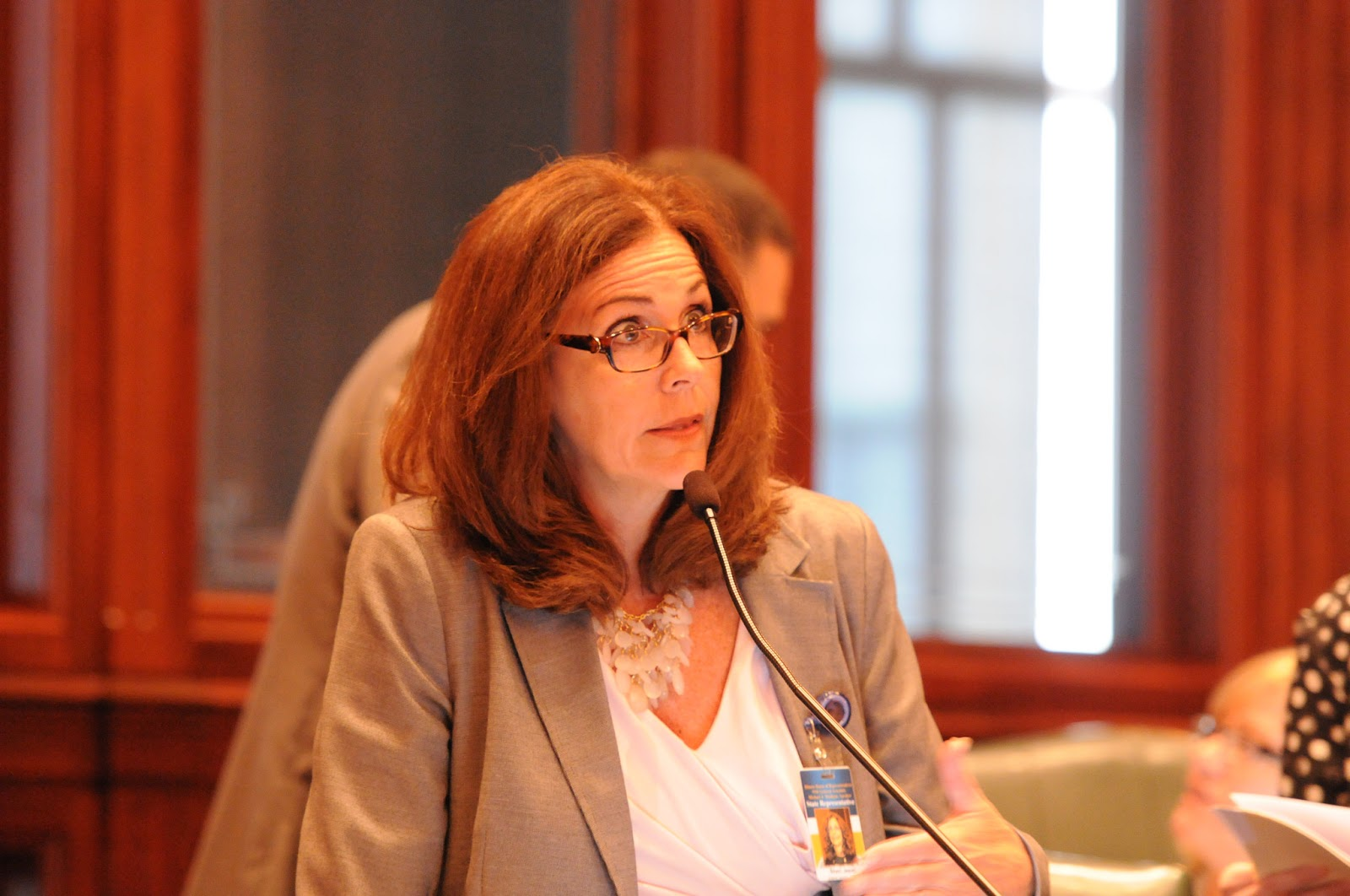 Illinois state representative sheri jesiel june 2016 nothing is more important to the residents of illinois than a bi partisan agreement on a balanced budget im dissatisfied and disappointed that the platinumwayz