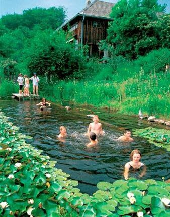 Swimming ponds going offgrid