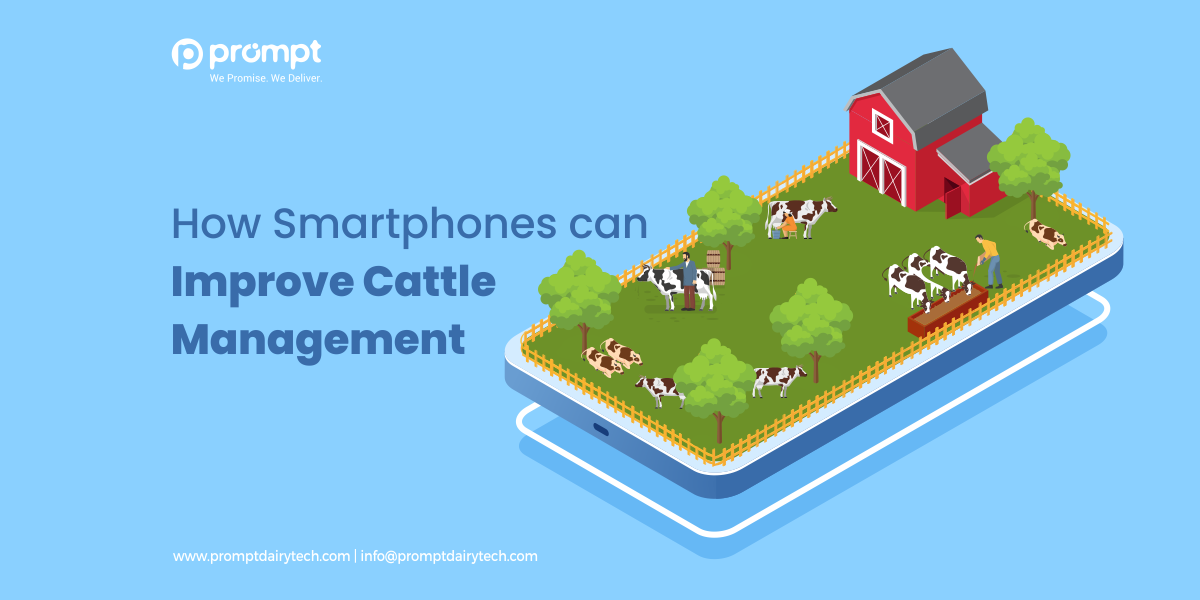 How Smartphones can Improve Cattle Management?