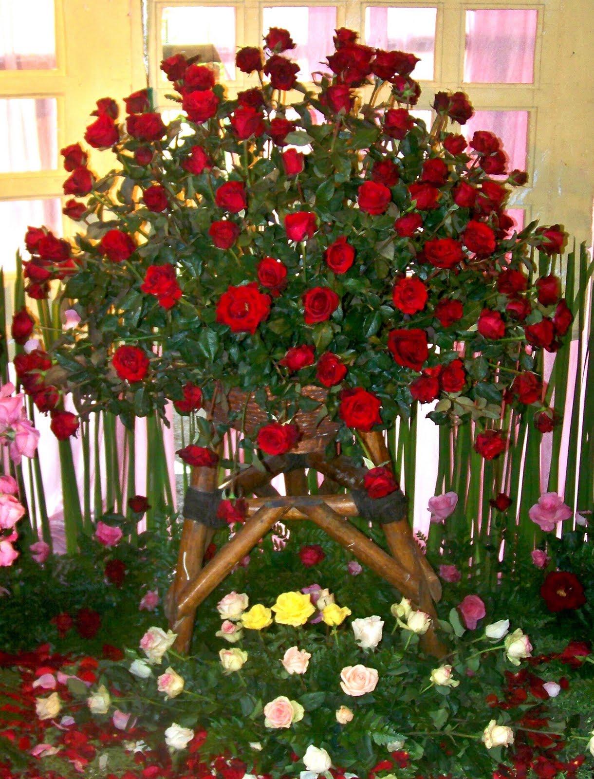 Rangkaian Bunga Mawar Besar 100 Bunga