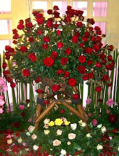 Rangkaian Bunga Mawar Besar
