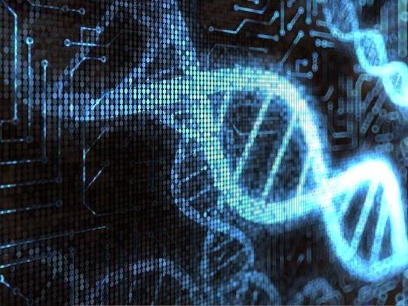 gene theory