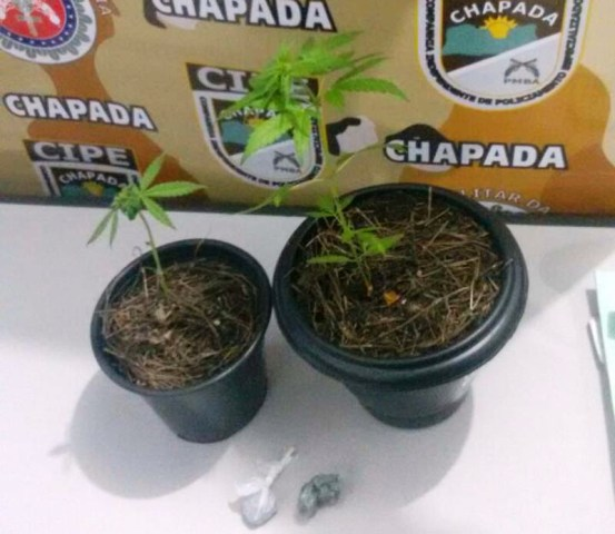 Menores são apreendidos por suspeita de traficarem drogas em Igatu/Andaraí