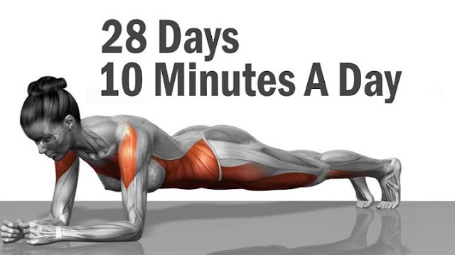 Best Body Weight Exercises That Will Change Your Body In 28 Days
