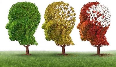 Tres arboles con forma de rotro aparecen de forma secuencial con menos hojas cada uno como una metáfora del alzheimer