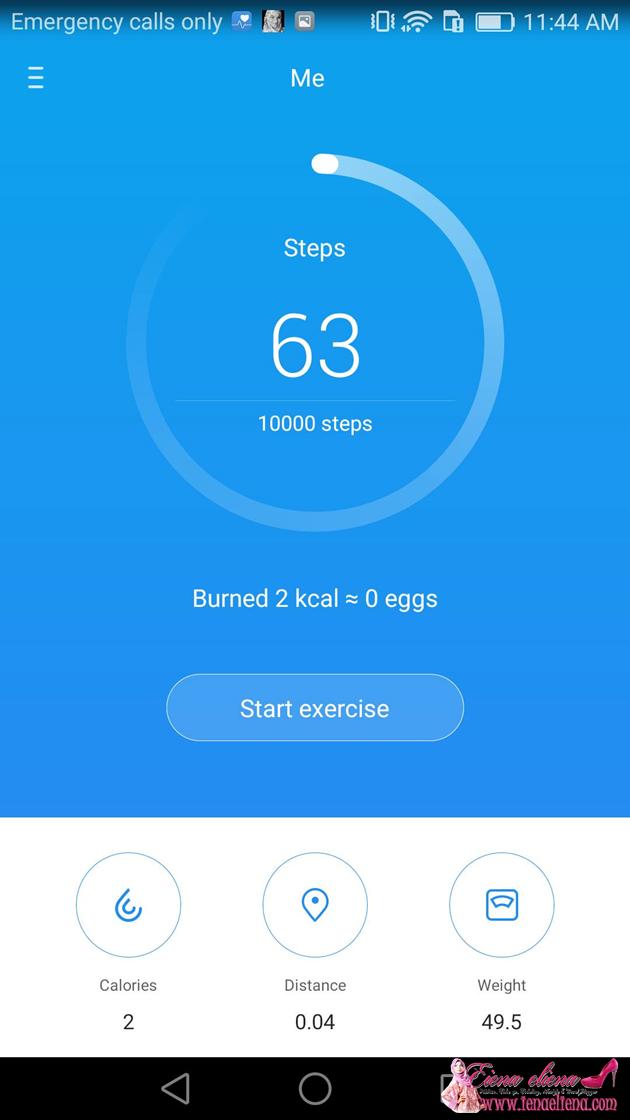 Fungsi Health