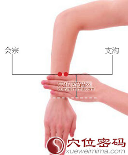 支溝穴位 | 支溝穴痛位置 - 穴道按摩經絡圖解 | Source:xueweitu.iiyun.com