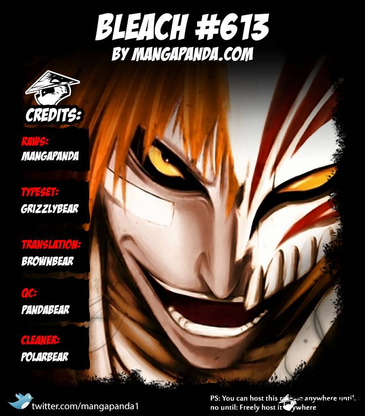 Bleach Ch 613: The Ordinary Peace