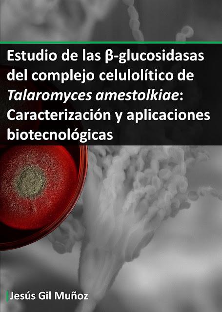 Tesis Doctoral @JGilMunoz