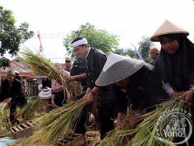 Di Purwakarta Petani Akan Mendapatkan Rp. 10 Juta Per Hektare Bagi Petani Gagal Panen