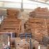 Profepa clausura Centro de Almacenamiento y Transformación de Materias Primas Forestales (CAT) en Mérida