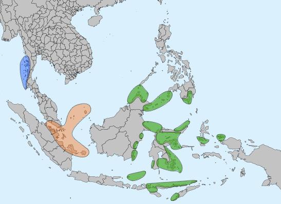 Phân bố cư dân bộ tộc Bajau