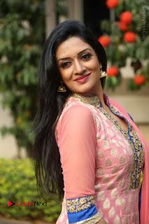 Actress Vimala Raman Stills in Beautiful Pink Salwar Kameez at (ONV) Om Namo Venkatesaya Press Meet  0178.JPG