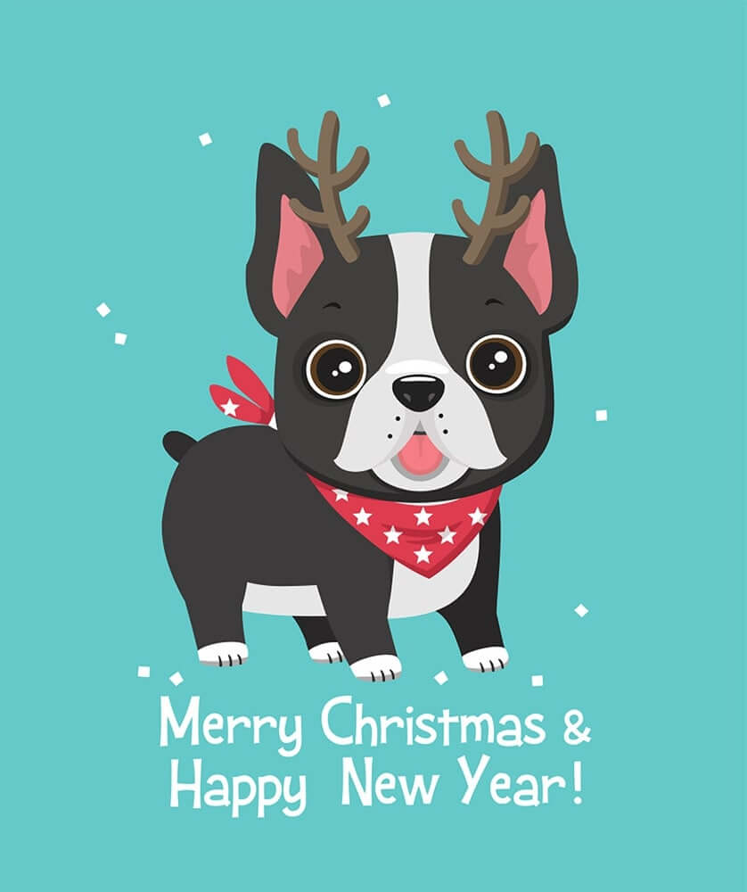 Que faire quand on trouve un chien? 0-christmas-images-clip-art