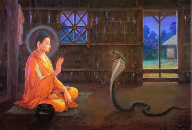 Kinh Tiểu Bộ - Trưởng lão Sumana