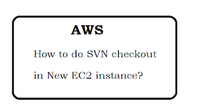 How to do SVN checkout in New EC2 instance