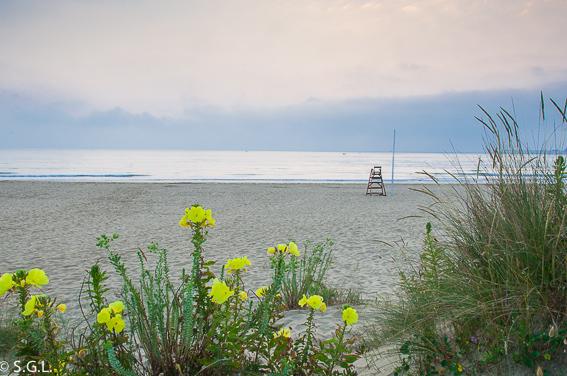 Vista de la Playa Salve en Laredo