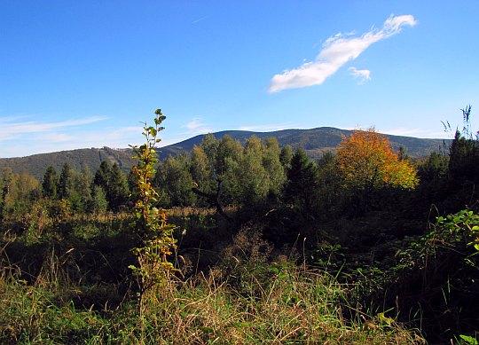 Widok z Polany Sulowa w kierunku Babiej Góry.