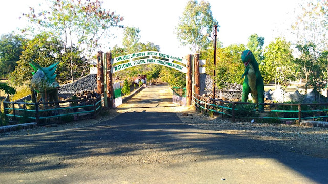 ghughwa fossils national park dindori , ghughva jivasm park udhyan dindori mp