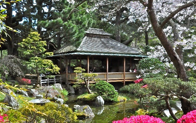 Japanese Tea Gardens with Water Pool