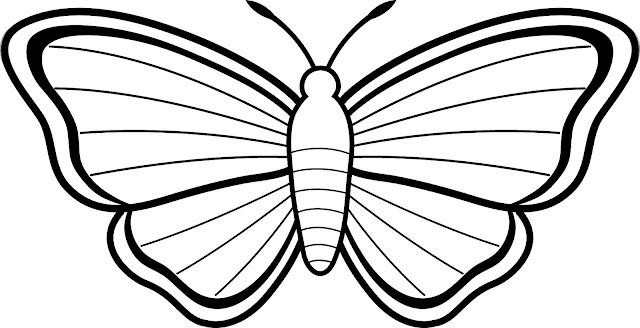 imágenes de mariposas para colorear para imprimir gratis