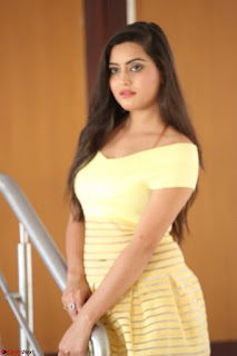 Shipra gaur in V Neck short Yellow Dress ~  050.JPG