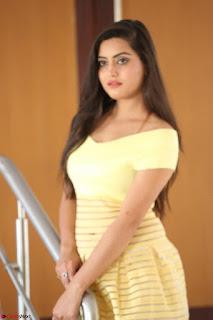 Shipra gaur in V Neck short Yellow Dress ~  050.JPG