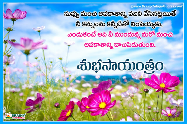 Here is Telugu Good Evening Messages and Quotes with Inspirational Lines, Subha Sayantram Quotes in Telugu language, Good Evening Quotes in Telugu font, Telugu Inspirational Quotes and Quotations,Best telugu Good evening Quotes, Heart touching Quotes, Beautiful telugu Good evening Quotations, Nice Telugu Good evening quotations for friends, Top telugu good evening quotations, Heart touching telugu love quotes, Feel good telugu Love quotes, Best telugu love quotes thoughts messages online, Best Telugu life Motivational Quotes, Beautiful Good evening Quotes in telugu with Images, Telugu Good evening Quotes HD Images free download.