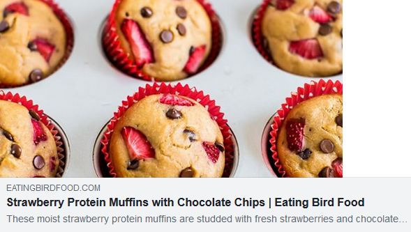 https://www.eatingbirdfood.com/mini-strawberry-chocolate-chip-protein-muffins/