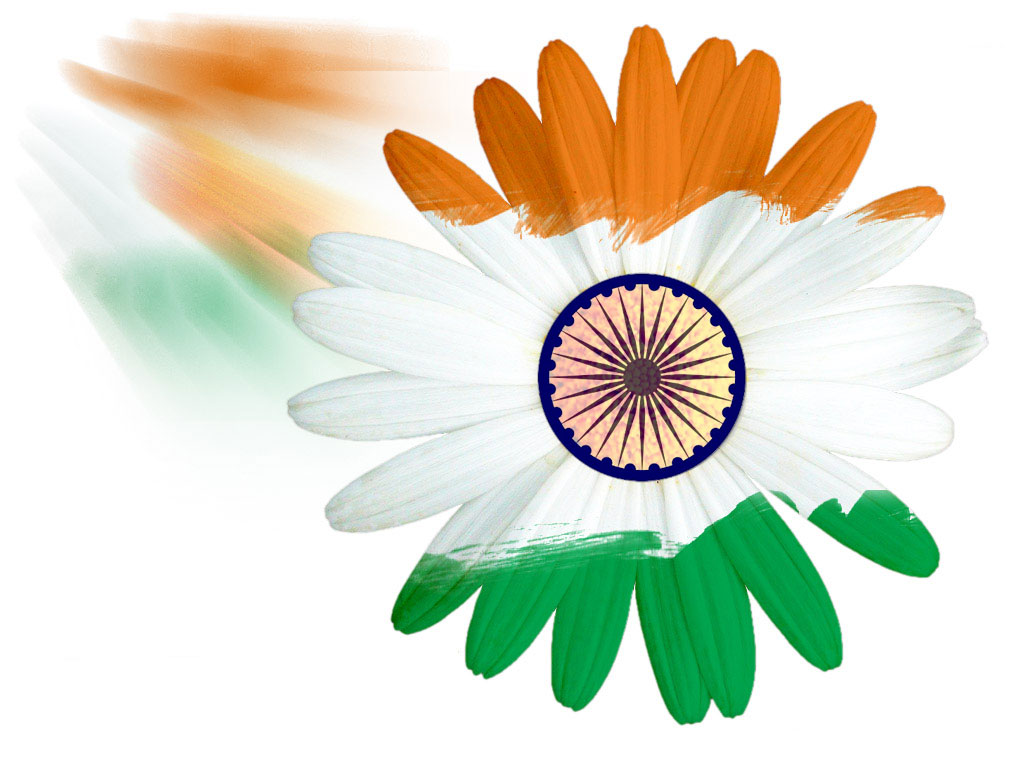 Flower With Indian Flag Hd