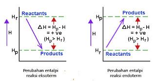 perbedaan reaksi eksoterm dan endoterm