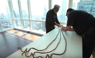 Ο άνθρωπος με τα μακρύτερα νύχια αποφάσισε να τα κόψει μετά από 68 χρόνια με... τροχό (Βίντεο)
