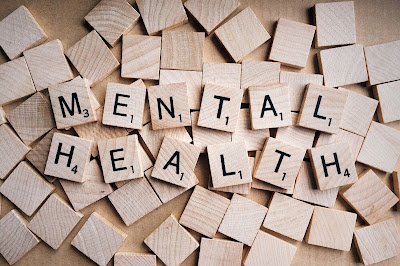 Blog post arguing for mental health professional in our schools.