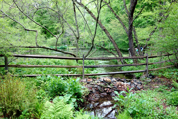 Image result for tyler arboretum