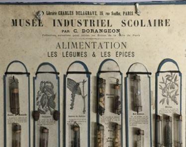 Détail d'un panneau Dorangeon à destination des musées scolaires (collection musée)