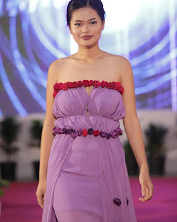 About Modelling in Mizoram