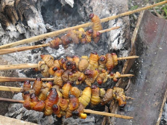 8 Kuliner Ekstrem di Indonesia Bikin Merinding Menyantapnya